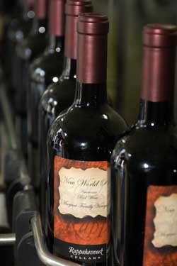 Bottling our wine © Joanna Pecha, www.photoimagesbyJoannaPecha.com